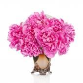 Пион цветок лепесток фон. Пион молочноцветковый. — Стоковое фото
