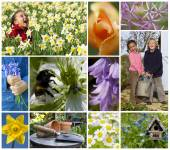 Children Playing Spring Garden Flowers Montage — Stock Photo