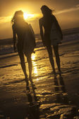 Beautiful Bikini Women Surfers & Surfboards At Beach — Stok fotoğraf