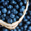 Blueberries — Stock Photo #64017205