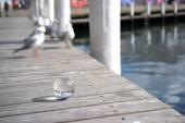 Křišťálová koule pohled miláček přístav, sydney — Stock fotografie
