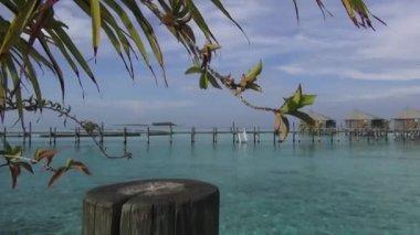 Water villa resort in maldives — Stock Video