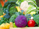 Fresh organic vegetables (close-up) — Stock Photo