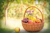枝編み細工品バスケットで秋の果物 — ストック写真
