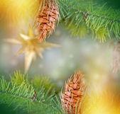 Pine cones on Christmas tree and Christmas light — 图库照片