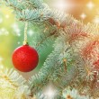 Red bauble on twig of Christmas tree — Stock Photo #56453529