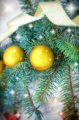 Gingillo d'oro sull'albero di natale — Foto Stock