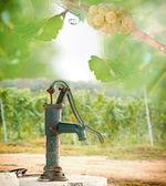Old Hand water pump in the vineyard — Zdjęcie stockowe