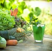 绿色果汁-健康饮料 — 图库照片