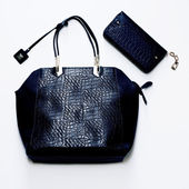Fashion glamorous ladies bag of crocodile skin. luxurious style — Stock Photo