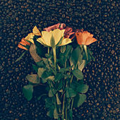 Flowers on the coffee background — Fotografia Stock