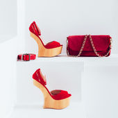 Luxury women's accessories. Bag and strap. Stylish shoes. Red ac — Stock Photo