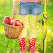 Child holding basket with apples — Stock Photo #52280147