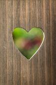 Corazón de primavera — Foto de Stock