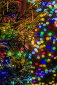Lit up Christmas tree in the street — Stock Photo