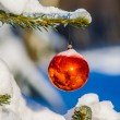 Red Christmas ball on a fir tree if the snowy forest — Stock Photo #58200067