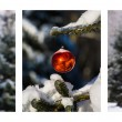 Triptych - Christmas Forest — Stock Photo #58201043