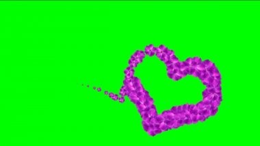 Hearts footage with chroma key. Footage for wedding video. Video background with animated hearts. Animated footage background for films or greeting cards. Video background for lovers or presentation. — Stockvideo