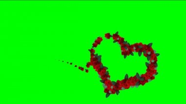 Hearts footage with chroma key. Footage for wedding video. Video background with animated hearts. Animated footage background for films or greeting cards. Video background for lovers or presentation. — Stock Video