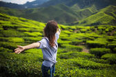 Woman with open arms on tea plantation — Stock Photo