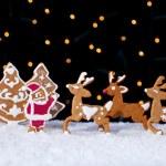 Santa welcoming his deers - food setting — Stock Photo #56884109