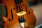 Cremona, Italy november 14 2014: Museum of Violin , Stradivari v — Stock Photo