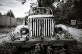 Old abandoned truck — Stock Photo