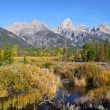 Picture perfect Grand Tetons — Stock Photo #52739825
