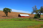Old barn near Pullman — Stock Photo