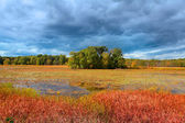 Kent lake — Stock Photo
