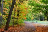 Biking trails — Stock Photo