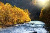 North Fork Potomac river — Stock Photo