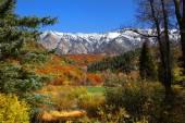Colorado rockies — Foto Stock