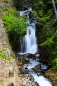 Water falls in Mount Rainier — Stock Photo
