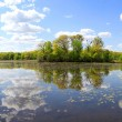 Reflections in the lake — Stock Photo #65887553