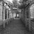Barbed wire at Auschwitz — Stock Photo #58662059