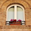 Medieval window with flowers pots — Stock Photo #66234775