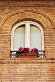 Medieval window with flowers pots — Stock Photo