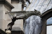 Gargoyle in Saint Germain l'Auxerrois church — Stock Photo