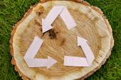 Wooden cut on grass and recycle symbol — Stock Photo