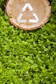 Wooden cut on grass and recycle symbol — Foto Stock