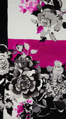 Obrázek květiny — Stock fotografie