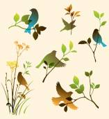 Colorful birds and twigs — Stock Vector