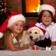 Kids and their pets at Christmas time — Stock Photo #56249641
