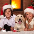 Kids with their pets at christmas time — Stock Photo #57808583
