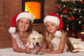 Christmas with our doggie — Stock Photo