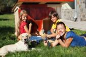 Happy family building a doghouse together — Stock Photo