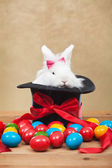 Cute but grumpy easter bunny with colorful dyed eggs — Stockfoto