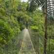 Hanging bridge, Costa Rica — Stockfoto #72962879