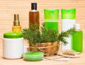Naturhaar Kosmetik und Zubehör — Stockfoto